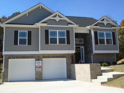 Ooltewah Single Family Home For Sale: 7644 Passport Dr #1135