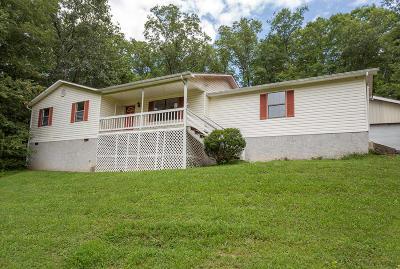 Hixson Single Family Home For Sale: 8516 Daisy Dallas Rd