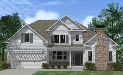 Hixson Single Family Home For Sale: 1141 Little Sorrel Rd #550
