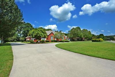Summerfield Single Family Home For Sale: 3705 Willow Oak Cir #36