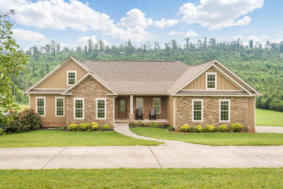 Ringgold Single Family Home Contingent: 3182 Cherokee Valley Rd