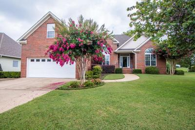 Apison Single Family Home For Sale: 3146 Stepping Rock Dr