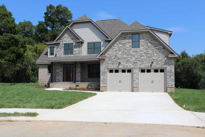 Hixson Single Family Home For Sale: 6580 Deep Canyon Rd