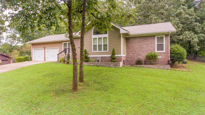 Chattanooga Single Family Home For Sale: 4857 Lone Hill Rd