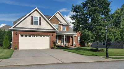 Chattanooga Single Family Home For Sale: 9639 Pecan Springs Cir
