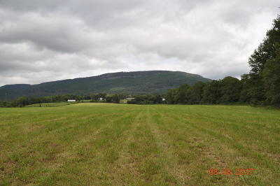 Rising Fawn Residential Lots & Land For Sale: 233 Mason Rd