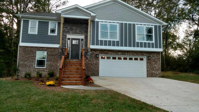 Chattanooga Single Family Home For Sale: 321 Paden Ln