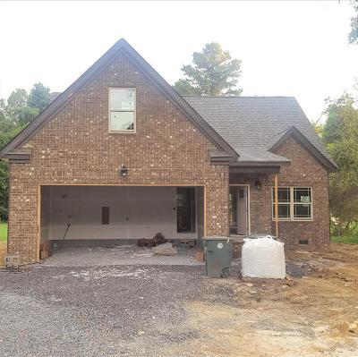 Chattanooga Single Family Home For Sale: 8342 E Mountain Ln