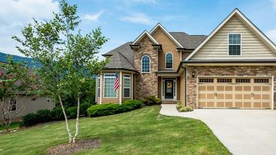 Chattanooga Single Family Home For Sale: 1039 Lynnstone Dr