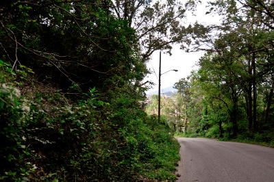 Chattanooga Residential Lots & Land For Sale: Lot 24 Meroney St #126m H 0
