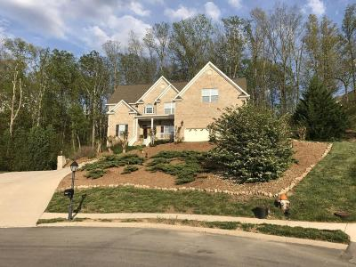 Ringgold Single Family Home For Sale: 180 Jalopy Ridge Dr