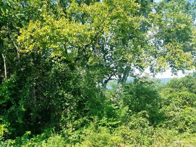 Chattanooga Residential Lots & Land For Sale: 561 Whitehall Rd