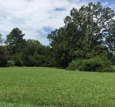 Chattanooga Residential Lots & Land For Sale: 117 N Parkdale North Ave #2