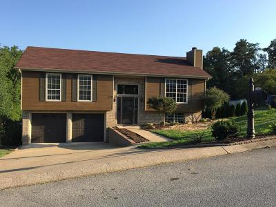 Soddy Daisy Single Family Home For Sale: 2118 N Fork Dr