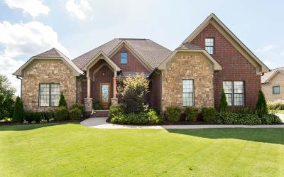 Ooltewah Single Family Home For Sale: 8086 Hampton Cove Dr