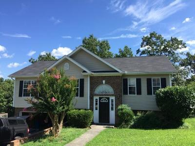 Ooltewah Single Family Home For Sale: 6792 Sawtooth Dr