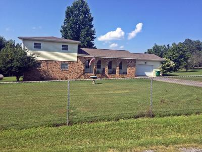 Flat Rock Single Family Home For Sale: 169 County Road 832