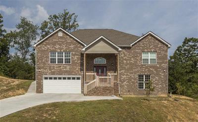Dayton Single Family Home For Sale: 119 Nicole Dr