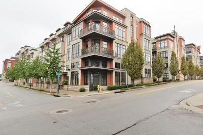 Chattanooga Condo For Sale: 129 Walnut St #Unit 108