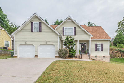 Ooltewah Single Family Home For Sale: 6727 Crooked Cove Way