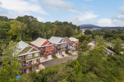 Chattanooga Single Family Home For Sale: 825 Stellar View