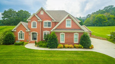 Ringgold Single Family Home For Sale: 153 Thorncrest Dr