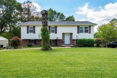 Hixson Single Family Home For Sale: 1514 N Chester Rd
