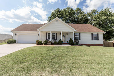 Ringgold Single Family Home For Sale: 255 Bluff View Dr
