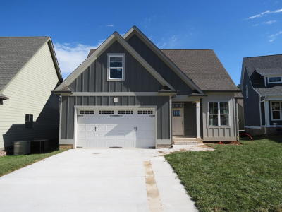 Ooltewah Single Family Home For Sale: 5429 Little Gem Ln