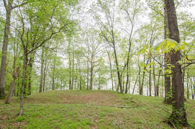 Chattanooga Residential Lots & Land For Sale: 7035 Glover Rd #Tract 3