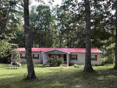Spring City Single Family Home For Sale: 1364 Big Ridge Rd