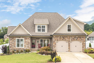Ooltewah Single Family Home Contingent: 8739 Seven Lakes Dr #83
