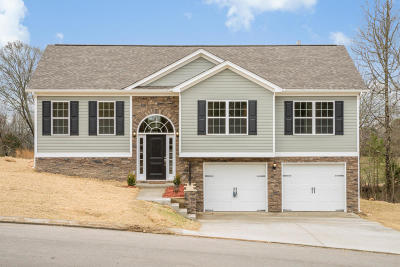 Soddy Daisy Single Family Home For Sale: 1854 Staghorn Dr #29