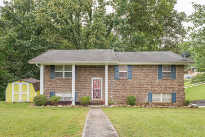Ringgold Single Family Home Contingent: 56 Marion Dr