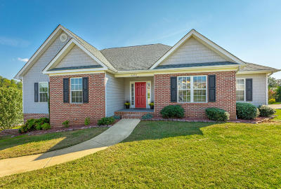 Ooltewah Single Family Home For Sale: 9489 Homewood Cir