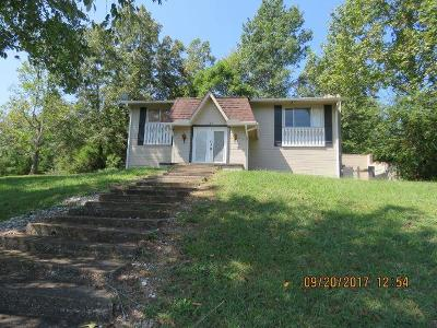 Ringgold Single Family Home For Sale: 135 Shamrock Dr
