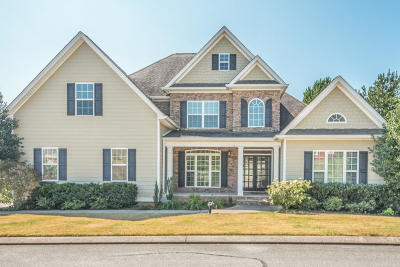 Ringgold Single Family Home For Sale: 380 Lonesome Dove Ln