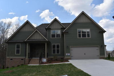 Ooltewah Single Family Home For Sale: 6775 Doughboys Ln #65