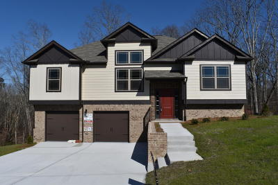 Ooltewah Single Family Home For Sale: 6468 Winlerkorn Ln #1230