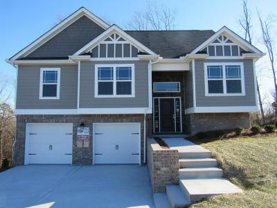 Ooltewah Single Family Home For Sale: 6460 Winlerkorn Ln #1229