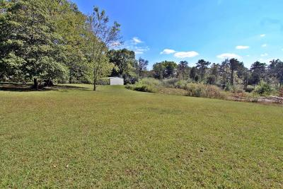 Flat Rock AL Residential Lots & Land For Sale: $35,000
