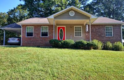 Spring City Single Family Home For Sale: 162 Adams St