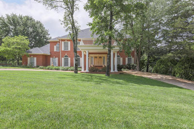 Chattanooga Single Family Home For Sale: 9344 Royal Mountain Dr