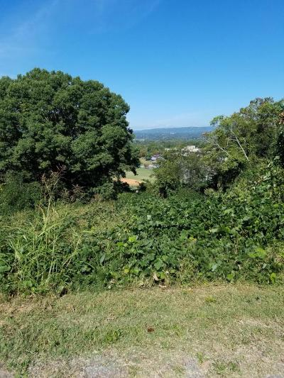 Chattanooga Residential Lots & Land For Sale: 277 Obey St