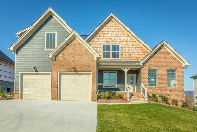 Soddy Daisy Single Family Home For Sale: 10955 High River Dr
