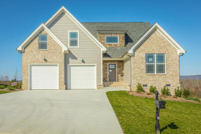 Soddy Daisy Single Family Home For Sale: 10963 High River Dr