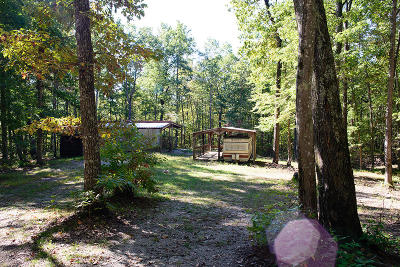 Spring City Single Family Home For Sale: 1247 Chestnut Ridge Rd