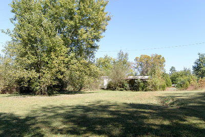 Spring City Single Family Home For Sale: 3391 Wolf Creek Rd