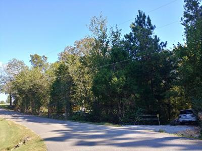 Residential Lots & Land For Sale: 94 Roy Bird Rd