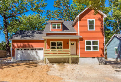 Chattanooga Single Family Home For Sale: 125 Hollyberry Ln